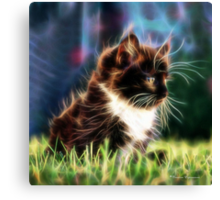 C.E. Lonely Lil' Kitty Canvas Print