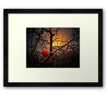 The Apple Glow Framed Print