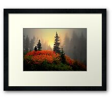 The Reds Are Here  ~ Fall Colors ~ Framed Print