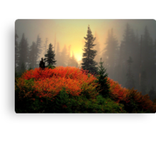 The Reds Are Here  ~ Fall Colors ~ Canvas Print