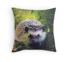 Hedgehog in the Grass Throw Pillow
