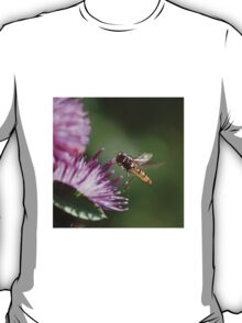 Hoverfly on Pink Flower T-Shirt