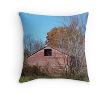 Out Standing Throw Pillow