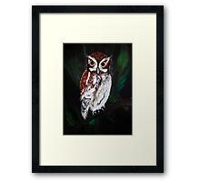 Eastern Screech Owl Framed Print