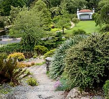 Dunedin Botanic Garden 2 by DebbyScott
