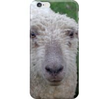 Sweet Rose, the Yearling  iPhone Case/Skin