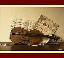 Stradi Vintage by Gilberte