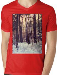Winter landscape Mens V-Neck T-Shirt