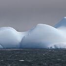 Curves of an iceberg panorama by John Dalkin