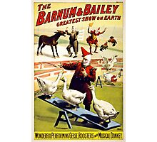 Barnum and Bailey  Circus Geese and musical donkey Photographic Print