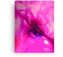Mother Pink Canvas Print