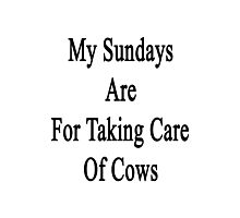My Sundays Are For Taking Care Of Cows  Photographic Print
