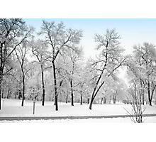 First Snow Photographic Print