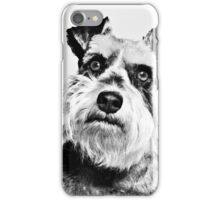 Angry Miniature Schnauzer Puppy iPhone Case/Skin