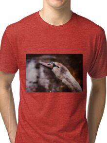 The Lone Cygnet Tri-blend T-Shirt
