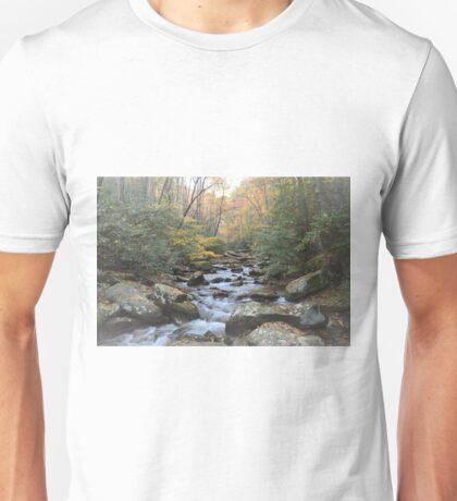 Autumn Tranquility Unisex T-Shirt