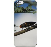 Metalic Wood-boring Beetle iPhone Case/Skin
