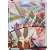The Branches Of A Mountain Ash iPad Case/Skin