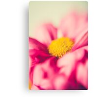 Flower power pink and yellow Canvas Print