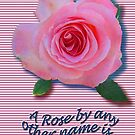 A Rose to remember LOVE by! by DAdeSimone