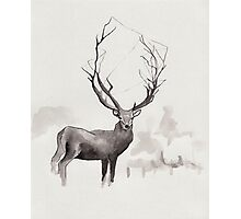 Art Illustration - Deer in the fog Photographic Print
