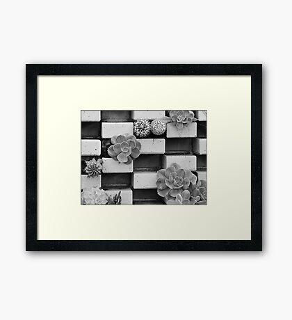 Brick Flowers Framed Print