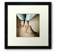 1160 Framed Print