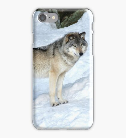 I'm eyeing a possible lunch_Timber Wolf iPhone Case/Skin
