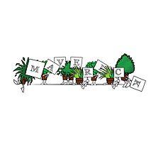 Plant Poses - Maverick! Photographic Print