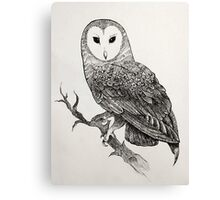 Detailed Owl Canvas Print