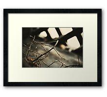 00840061 Framed Print