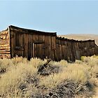 Tom Miller Stable & Ice House - Bodie, Mono County, CA by Rebel Kreklow