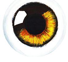 Orange Eye by aylasplee