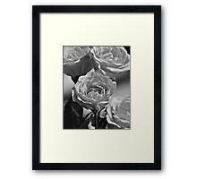 Roses For Mom Framed Print