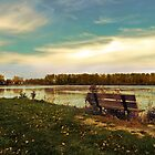 Autumn at East Harbor State Park 3 by SRowe Art