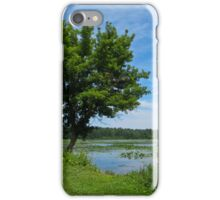 East Harbor State Park - Scenic Overlook 2 iPhone Case/Skin
