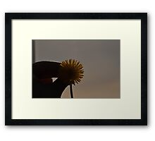 Dandy Day Framed Print