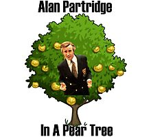 Alan Partridge in a pear tree. Photographic Print