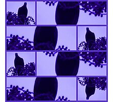 Wompoo Fruit Dove in Silhouette Photographic Print