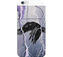 ~birds I view~ (snippet) iPhone Case/Skin