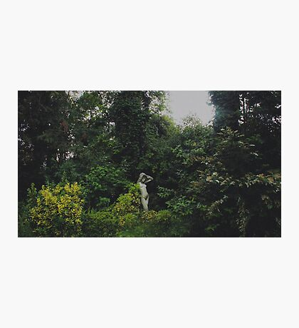 Femenine Nature Photographic Print