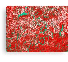 Red Pink Green Abstract Pattern Canvas Print