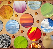 Spots of Nature by SRowe Art