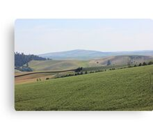 Palouse landscape 1 Canvas Print