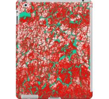 Red Pink Green Abstract Pattern iPad Case/Skin