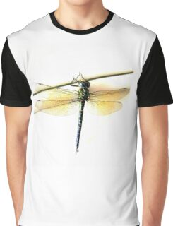 Dragonfly Exposed Graphic T-Shirt