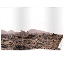 Mars on Earth Poster