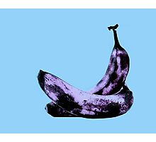 Pink Bananas in Love Photographic Print