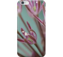 Purple Alpine in the Glasshouse at Kew Gardens iPhone Case/Skin