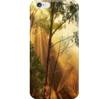 Cliff face in mist, Mount Buffalo iPhone Case/Skin
